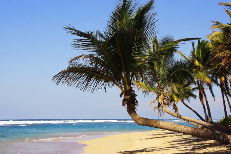 The Weather In Punta Cana And The Best Time To Visit- A Local Guide