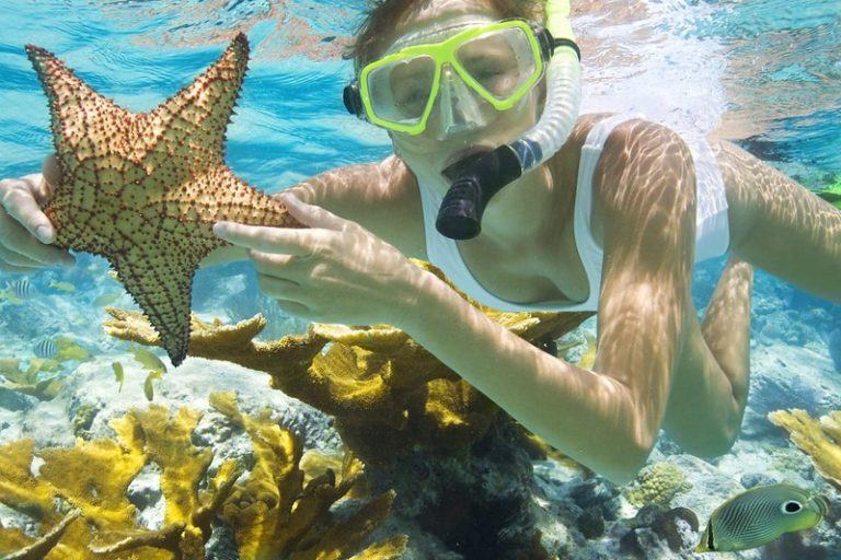 Snorkeling in Punta Cana: Things You Should Know Before Coming